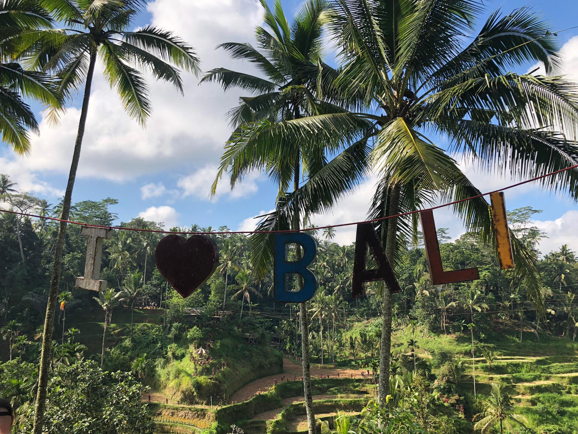 My Trip To Bali: Ubud Part 1