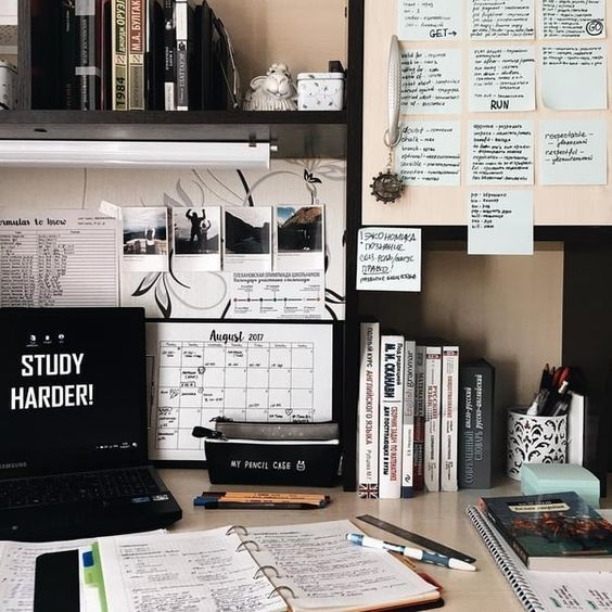 Surviving the dissertation: Tips and how to be motivated for 8 months