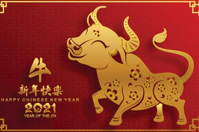 Lunar New Year Foods!